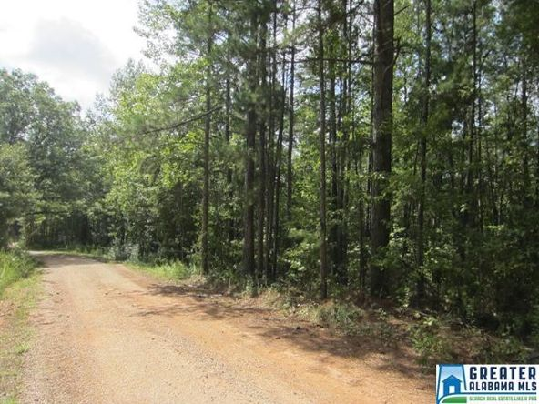 4.17 Acres Thomas Ln., Ashland, AL 36251 Photo 2