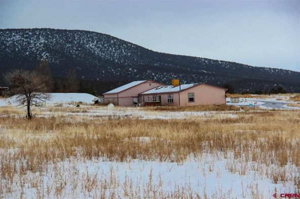 30333 Old West Rd., Hotchkiss, CO 81419 Photo 46