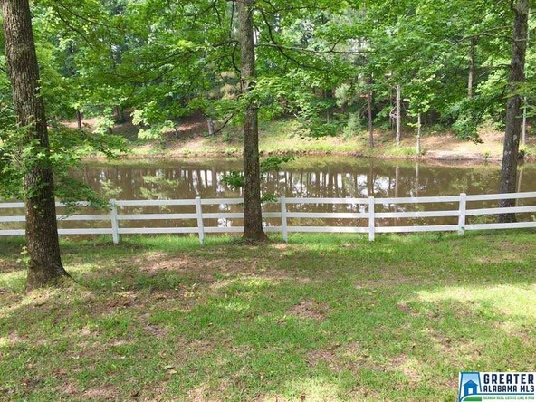 9445 Pineview Rd., Dora, AL 35062 Photo 12