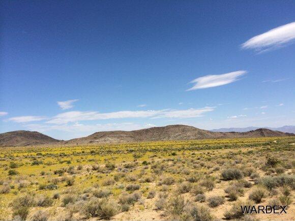 33236005 Land, Kingman, AZ 86409 Photo 7
