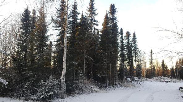 14613 E. Wilderness Rim, Willow, AK 99688 Photo 13