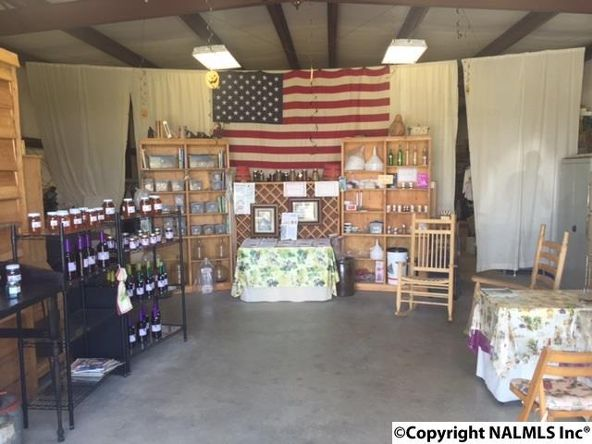 1295 Martling Gap Rd., Albertville, AL 35951 Photo 3