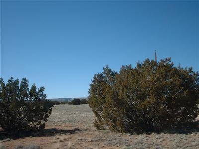 25505 E. Hillcrest Dr., Seligman, AZ 86337 Photo 8