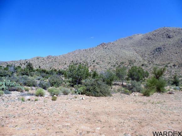 10763 E. Spring Valley Dr., Hackberry, AZ 86411 Photo 13
