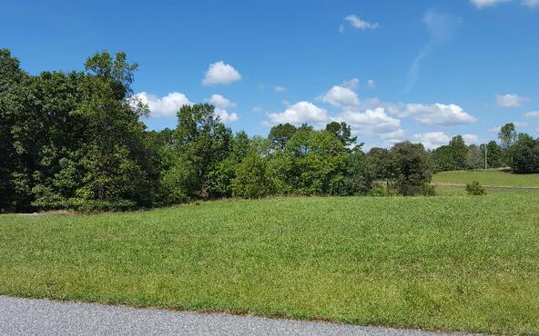 Lot27 Jewell Mason, Blairsville, GA 30512 Photo 10