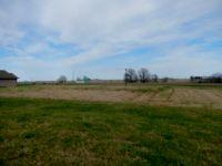 Home for sale: Bradley Ln., Auxvasse, MO 65231