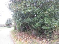 Home for sale: 198 Barth Rd., Campobello, SC 29322