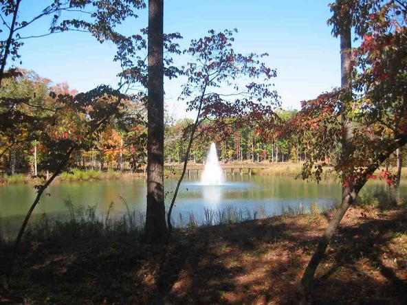 1010 East Grove, Greensboro, GA 30642 Photo 10