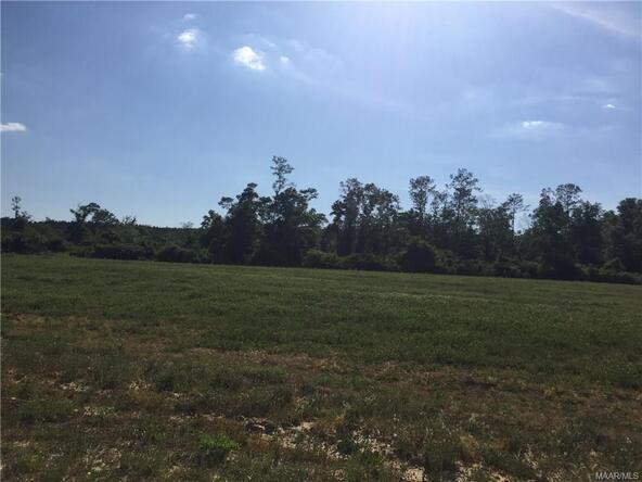 4 County Rd. 225 ., Jack, AL 36346 Photo 4