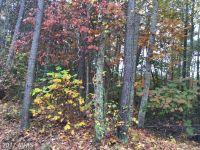 Home for sale: 157 John Paul Jones Dr., Ruther Glen, VA 22546