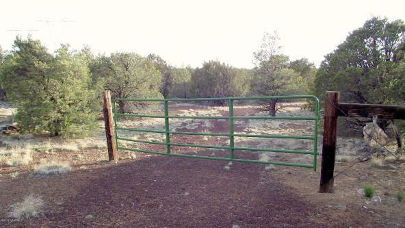 12498 N. Chino Rd., Williams, AZ 86046 Photo 22