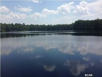 Home for sale: 0 Teardrop Trail, Chipley, FL 32428