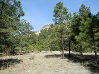 Home for sale: Spruce Loop, Jemez Springs, NM 87025