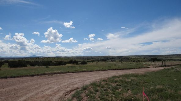 99 River Springs Ranch Unit 3 --, Saint Johns, AZ 85936 Photo 22