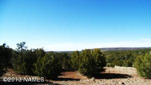 662 E. Running Bear Rd., Williams, AZ 86046 Photo 5