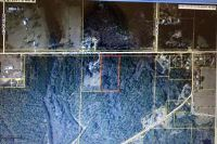 Home for sale: W. Co Hwy. 147, Paxton, FL 32538