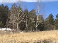 Home for sale: 191 Strong Dr., Cripple Creek, CO 80813