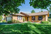 Home for sale: 1325 Marengo Ct., Naperville, IL 60564