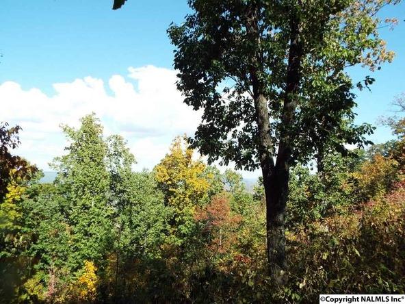 15 S. County Rd. 89, Mentone, AL 35984 Photo 22