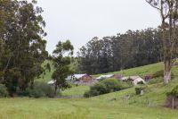 Home for sale: Bodega Bay, CA 94923