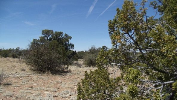6376 W. Fire Sky Trail, Williams, AZ 86046 Photo 9