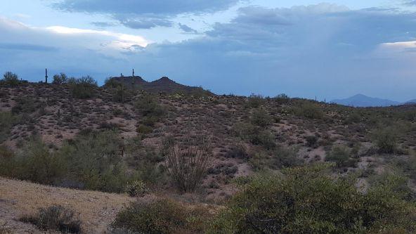 14717 N. El Camino Dorado St., Fort Mcdowell, AZ 85264 Photo 4