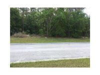 Home for sale: 5419 Heritage Pass Cir., Mount Dora, FL 32757