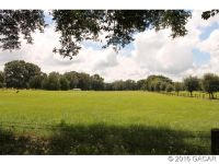 Home for sale: 19833 N.W. 78th Avenue, Alachua, FL 32615