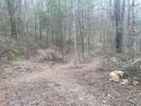 Home for sale: Lot 4&5 Holley Mountain Top Rd., Whittier, NC 28789