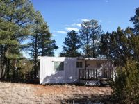 Home for sale: 3491 Deer Track Trail, Overgaard, AZ 85933