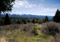 Home for sale: Tbd Cutthroat Run L24, Irwin, ID 83428
