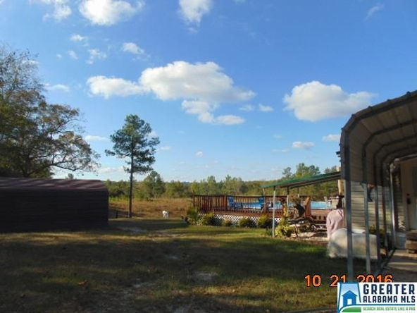 1587 Tom Turner Rd., Billingsley, AL 36006 Photo 24