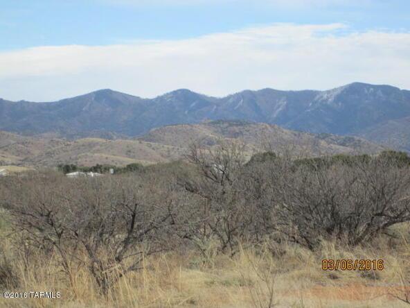 10101 E. Rock Creek, Pearce, AZ 85625 Photo 31