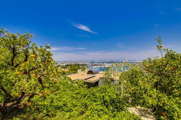 807 Armada Terrace, San Diego, CA 92106 Photo 48