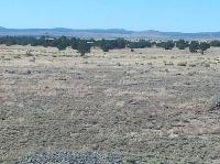 Home for sale: 0 E. Tanner Rd., Ash Fork, AZ 86320