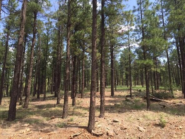 9584 Sierra Springs Way, Pinetop, AZ 85935 Photo 4