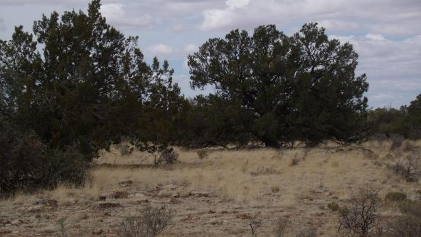 6376 W. Fire Sky Trail, Williams, AZ 86046 Photo 2