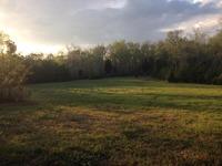 Home for sale: 0 Straight Gut Rd. Rd, La Fayette, GA 30728