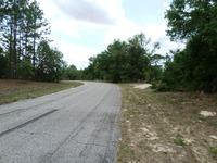 Home for sale: 11590 N. Condor Dr., Citrus Springs, FL 34433