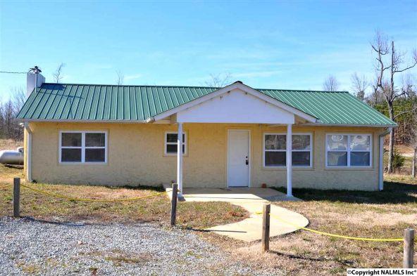 425 Menominee Rd., Langston, AL 35755 Photo 19
