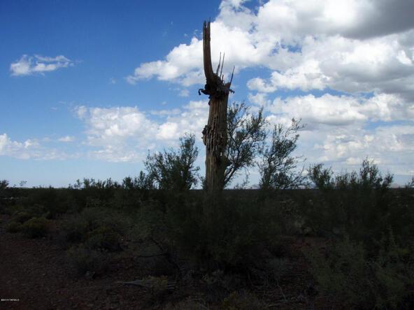 47650 E. Rain Water, Tucson, AZ 85739 Photo 15