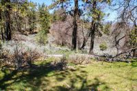 Home for sale: 27281 Rebel Ct., Tehachapi, CA 93561