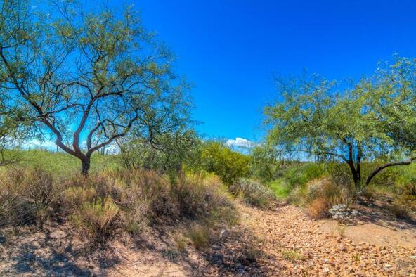 1037 W. Tortolita Mountain, Oro Valley, AZ 85755 Photo 111