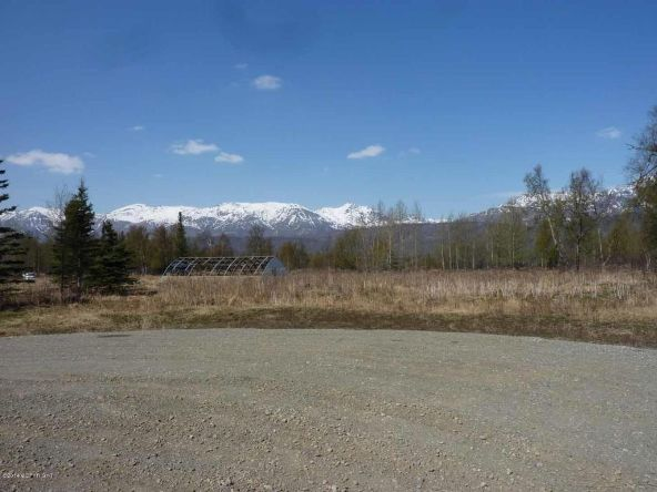 12164 N. Glenn Hwy., Sutton, AK 99674 Photo 4