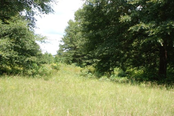 2.86 Ac Bush Isle Rd., Andalusia, AL 36421 Photo 2