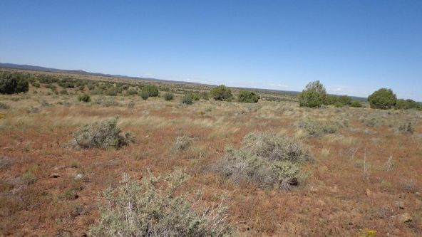 645 Westwood Ranch Lot 645, Seligman, AZ 86337 Photo 25