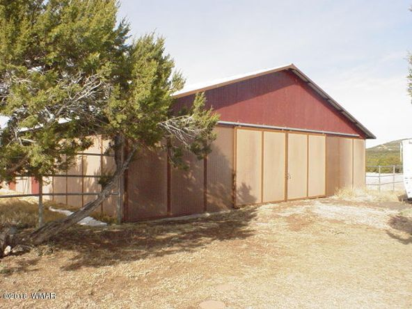 481 Apache County Rd. 3144, Vernon, AZ 85940 Photo 27