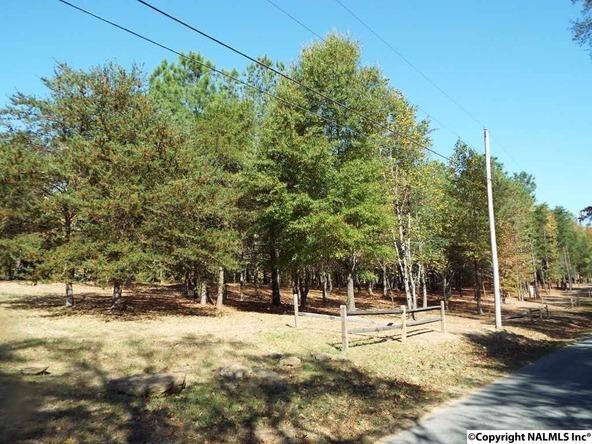11 S. County Rd. 89, Mentone, AL 35984 Photo 27