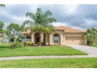 Home for sale: 3916 Northridge Dr., Valrico, FL 33596