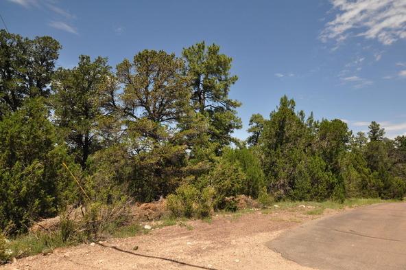 3146 Ranch Rd., Overgaard, AZ 85933 Photo 6